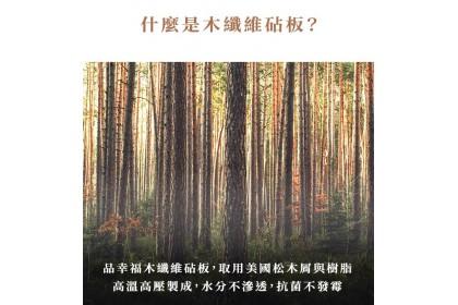 台灣品幸福 不發霉超抗菌木纖維砧板(大+小)